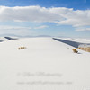 "Dunes © 2006 Nova Mackentley White Sands Nat Monument, NM WSD  <div class=""ss-paypal-button""><div class=""ss-paypal-add-to-cart-section""><div class=""ss-paypal-product-options""><h4>Mat Sizes</h4><ul><li><a href=""https://www.paypal.com/cgi-bin/webscr?cmd=_cart&amp;business=T77V5VKCW4K2U&amp;lc=US&amp;item_name=Dunes%20%C2%A9%202006%20Nova%20Mackentley%20White%20Sands%20Nat%20Monument%2C%20NM%20WSD&amp;item_number=http%3A%2F%2Fwww.nightflightimages.com%2FGalleries-1%2FTravels%2Fi-SDtRp6h&amp;button_subtype=products&amp;no_note=0&amp;cn=Add%20special%20instructions%20to%20the%20seller%3A&amp;no_shipping=2&amp;currency_code=USD&amp;weight_unit=lbs&amp;add=1&amp;bn=PP-ShopCartBF%3Abtn_cart_SM.gif%3ANonHosted&amp;on0=Mat%20Sizes&amp;option_select0=5%20x%207&amp;option_amount0=10.00&amp;option_select1=8%20x%2010&amp;option_amount1=18.00&amp;option_select2=11%20x%2014&amp;option_amount2=28.00&amp;option_select3=card&amp;option_amount3=4.00&amp;option_index=0&amp;charset=utf-8&amp;submit=&amp;os0=5%20x%207"" target=""paypal""><span>5 x 7 $11.00 USD</span><img src=""https://www.paypalobjects.com/en_US/i/btn/btn_cart_SM.gif""></a></li><li><a href=""https://www.paypal.com/cgi-bin/webscr?cmd=_cart&amp;business=T77V5VKCW4K2U&amp;lc=US&amp;item_name=Dunes%20%C2%A9%202006%20Nova%20Mackentley%20White%20Sands%20Nat%20Monument%2C%20NM%20WSD&amp;item_number=http%3A%2F%2Fwww.nightflightimages.com%2FGalleries-1%2FTravels%2Fi-SDtRp6h&amp;button_subtype=products&amp;no_note=0&amp;cn=Add%20special%20instructions%20to%20the%20seller%3A&amp;no_shipping=2&amp;currency_code=USD&amp;weight_unit=lbs&amp;add=1&amp;bn=PP-ShopCartBF%3Abtn_cart_SM.gif%3ANonHosted&amp;on0=Mat%20Sizes&amp;option_select0=5%20x%207&amp;option_amount0=10.00&amp;option_select1=8%20x%2010&amp;option_amount1=18.00&amp;option_select2=11%20x%2014&amp;option_amount2=28.00&amp;option_select3=card&amp;option_amount3=4.00&amp;option_index=0&amp;charset=utf-8&amp;submit=&amp;os0=8%20x%2010"" target=""paypal""><span>8 x 10 $19.00 USD</span><img src=""https://www.paypalobjects.com/en_US/i/btn/btn_cart_SM.gif""></a></li><li><a href=""https://www.paypal.com/cgi-bin/webscr?cmd=_cart&amp;business=T77V5VKCW4K2U&amp;lc=US&amp;item_name=Dunes%20%C2%A9%202006%20Nova%20Mackentley%20White%20Sands%20Nat%20Monument%2C%20NM%20WSD&amp;item_number=http%3A%2F%2Fwww.nightflightimages.com%2FGalleries-1%2FTravels%2Fi-SDtRp6h&amp;button_subtype=products&amp;no_note=0&amp;cn=Add%20special%20instructions%20to%20the%20seller%3A&amp;no_shipping=2&amp;currency_code=USD&amp;weight_unit=lbs&amp;add=1&amp;bn=PP-ShopCartBF%3Abtn_cart_SM.gif%3ANonHosted&amp;on0=Mat%20Sizes&amp;option_select0=5%20x%207&amp;option_amount0=10.00&amp;option_select1=8%20x%2010&amp;option_amount1=18.00&amp;option_select2=11%20x%2014&amp;option_amount2=28.00&amp;option_select3=card&amp;option_amount3=4.00&amp;option_index=0&amp;charset=utf-8&amp;submit=&amp;os0=11%20x%2014"" target=""paypal""><span>11 x 14 $29.00 USD</span><img src=""https://www.paypalobjects.com/en_US/i/btn/btn_cart_SM.gif""></a></li><li><a href=""https://www.paypal.com/cgi-bin/webscr?cmd=_cart&amp;business=T77V5VKCW4K2U&amp;lc=US&amp;item_name=Dunes%20%C2%A9%202006%20Nova%20Mackentley%20White%20Sands%20Nat%20Monument%2C%20NM%20WSD&amp;item_number=http%3A%2F%2Fwww.nightflightimages.com%2FGalleries-1%2FTravels%2Fi-SDtRp6h&amp;button_subtype=products&amp;no_note=0&amp;cn=Add%20special%20instructions%20to%20the%20seller%3A&amp;no_shipping=2&amp;currency_code=USD&amp;weight_unit=lbs&amp;add=1&amp;bn=PP-ShopCartBF%3Abtn_cart_SM.gif%3ANonHosted&amp;on0=Mat%20Sizes&amp;option_select0=5%20x%207&amp;option_amount0=10.00&amp;option_select1=8%20x%2010&amp;option_amount1=18.00&amp;option_select2=11%20x%2014&amp;option_amount2=28.00&amp;option_select3=card&amp;option_amount3=4.00&amp;option_index=0&amp;charset=utf-8&amp;submit=&amp;os0=card"" target=""paypal""><span>card $5.00 USD</span><img src=""https://www.paypalobjects.com/en_US/i/btn/btn_cart_SM.gif""></a></li></ul></div></div> <div class=""ss-paypal-view-cart-section""><a href=""https://www.paypal.com/cgi-bin/webscr?cmd=_cart&amp;business=T77V5VKCW4K2U&amp;display=1&amp;item_name=Dunes%20%C2%A9%202006%20Nova%20Mackentley%20White%20Sands%20Nat%20Monument%2C%20NM%20WSD&amp;item_number=http%3A%2F%2Fwww.nightflightimages.com%2FGalleries-1%2FTravels%2Fi-SDtRp6h&amp;charset=utf-8&amp;submit="" target=""paypal"" class=""ss-paypal-submit-button""><img src=""https://www.paypalobjects.com/en_US/i/btn/btn_viewcart_LG.gif""></a></div></div><div class=""ss-paypal-button-end""></div>"
