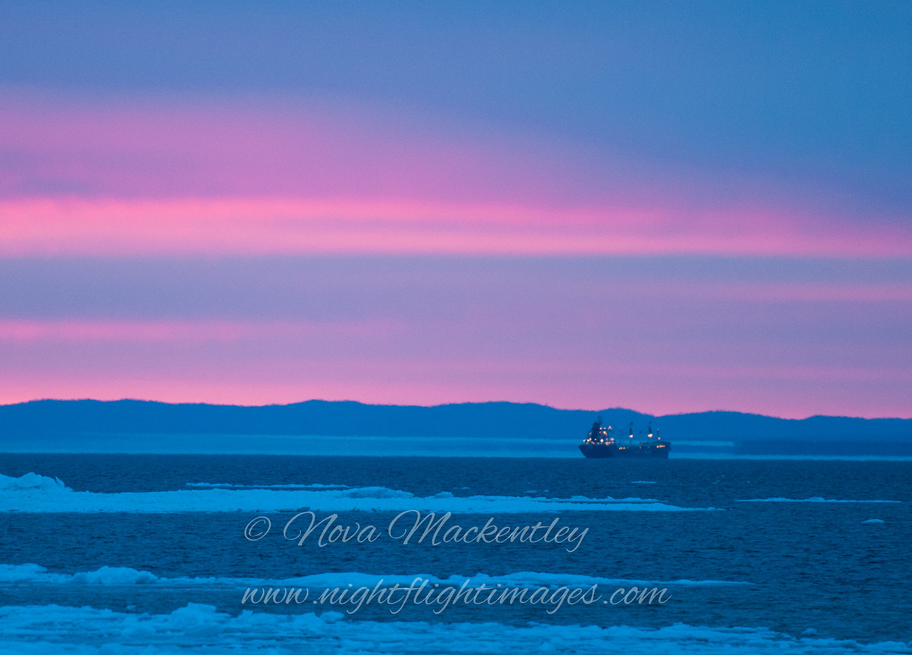"Sunrise at Whitefish Point with ship © 2014 Nova Mackentley Whitefish Point, MI SPS  <div class=""ss-paypal-button""><div class=""ss-paypal-add-to-cart-section""><div class=""ss-paypal-product-options""><h4>Mat Sizes</h4><ul><li><a href=""https://www.paypal.com/cgi-bin/webscr?cmd=_cart&business=T77V5VKCW4K2U&lc=US&item_name=Sunrise%20at%20Whitefish%20Point%20with%20ship%20%C2%A9%202014%20Nova%20Mackentley%20Whitefish%20Point%2C%20MI%20SPS&item_number=http%3A%2F%2Fwww.nightflightimages.com%2FGalleries-1%2FNew%2Fi-DdvLJ2N&button_subtype=products&no_note=0&cn=Add%20special%20instructions%20to%20the%20seller%3A&no_shipping=2&currency_code=USD&weight_unit=lbs&add=1&bn=PP-ShopCartBF%3Abtn_cart_SM.gif%3ANonHosted&on0=Mat%20Sizes&option_select0=5%20x%207&option_amount0=10.00&option_select1=8%20x%2010&option_amount1=18.00&option_select2=11%20x%2014&option_amount2=28.00&option_select3=card&option_amount3=4.00&option_index=0&charset=utf-8&submit=&os0=5%20x%207"" target=""paypal""><span>5 x 7 $11.00 USD</span><img src=""https://www.paypalobjects.com/en_US/i/btn/btn_cart_SM.gif""></a></li><li><a href=""https://www.paypal.com/cgi-bin/webscr?cmd=_cart&business=T77V5VKCW4K2U&lc=US&item_name=Sunrise%20at%20Whitefish%20Point%20with%20ship%20%C2%A9%202014%20Nova%20Mackentley%20Whitefish%20Point%2C%20MI%20SPS&item_number=http%3A%2F%2Fwww.nightflightimages.com%2FGalleries-1%2FNew%2Fi-DdvLJ2N&button_subtype=products&no_note=0&cn=Add%20special%20instructions%20to%20the%20seller%3A&no_shipping=2&currency_code=USD&weight_unit=lbs&add=1&bn=PP-ShopCartBF%3Abtn_cart_SM.gif%3ANonHosted&on0=Mat%20Sizes&option_select0=5%20x%207&option_amount0=10.00&option_select1=8%20x%2010&option_amount1=18.00&option_select2=11%20x%2014&option_amount2=28.00&option_select3=card&option_amount3=4.00&option_index=0&charset=utf-8&submit=&os0=8%20x%2010"" target=""paypal""><span>8 x 10 $19.00 USD</span><img src=""https://www.paypalobjects.com/en_US/i/btn/btn_cart_SM.gif""></a></li><li><a href=""https://www.paypal.com/cgi-bin/webscr?cmd=_cart&business=T77V5VKCW4K2U&lc=US&item_name=Sunrise%20at%20Whitefish%20Point%20with%20ship%20%C2%A9%202014%20Nova%20Mackentley%20Whitefish%20Point%2C%20MI%20SPS&item_number=http%3A%2F%2Fwww.nightflightimages.com%2FGalleries-1%2FNew%2Fi-DdvLJ2N&button_subtype=products&no_note=0&cn=Add%20special%20instructions%20to%20the%20seller%3A&no_shipping=2&currency_code=USD&weight_unit=lbs&add=1&bn=PP-ShopCartBF%3Abtn_cart_SM.gif%3ANonHosted&on0=Mat%20Sizes&option_select0=5%20x%207&option_amount0=10.00&option_select1=8%20x%2010&option_amount1=18.00&option_select2=11%20x%2014&option_amount2=28.00&option_select3=card&option_amount3=4.00&option_index=0&charset=utf-8&submit=&os0=11%20x%2014"" target=""paypal""><span>11 x 14 $29.00 USD</span><img src=""https://www.paypalobjects.com/en_US/i/btn/btn_cart_SM.gif""></a></li><li><a href=""https://www.paypal.com/cgi-bin/webscr?cmd=_cart&business=T77V5VKCW4K2U&lc=US&item_name=Sunrise%20at%20Whitefish%20Point%20with%20ship%20%C2%A9%202014%20Nova%20Mackentley%20Whitefish%20Point%2C%20MI%20SPS&item_number=http%3A%2F%2Fwww.nightflightimages.com%2FGalleries-1%2FNew%2Fi-DdvLJ2N&button_subtype=products&no_note=0&cn=Add%20special%20instructions%20to%20the%20seller%3A&no_shipping=2&currency_code=USD&weight_unit=lbs&add=1&bn=PP-ShopCartBF%3Abtn_cart_SM.gif%3ANonHosted&on0=Mat%20Sizes&option_select0=5%20x%207&option_amount0=10.00&option_select1=8%20x%2010&option_amount1=18.00&option_select2=11%20x%2014&option_amount2=28.00&option_select3=card&option_amount3=4.00&option_index=0&charset=utf-8&submit=&os0=card"" target=""paypal""><span>card $5.00 USD</span><img src=""https://www.paypalobjects.com/en_US/i/btn/btn_cart_SM.gif""></a></li></ul></div></div> <div class=""ss-paypal-view-cart-section""><a href=""https://www.paypal.com/cgi-bin/webscr?cmd=_cart&business=T77V5VKCW4K2U&display=1&item_name=Sunrise%20at%20Whitefish%20Point%20with%20ship%20%C2%A9%202014%20Nova%20Mackentley%20Whitefish%20Point%2C%20MI%20SPS&item_number=http%3A%2F%2Fwww.nightflightimages.com%2FGalleries-1%2FNew%2Fi-DdvLJ2N&charset=utf-8&submit="" target=""paypal"" class=""ss-paypal-submit-button""><img src=""https://www.paypalobjects.com/en_US/i/btn/btn_viewcart_LG.gif""></a></div></div><div class=""ss-paypal-button-end""></div>"