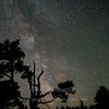 "Milky Way & Tree 1 © 2013 Nova Mackentley Whitefish Point, MI MWT  <div class=""ss-paypal-button""><div class=""ss-paypal-add-to-cart-section""><div class=""ss-paypal-product-options""><h4>Mat Sizes</h4><ul><li><a href=""https://www.paypal.com/cgi-bin/webscr?cmd=_cart&business=T77V5VKCW4K2U&lc=US&item_name=Milky%20Way%20%26amp%3B%20Tree%201%20%C2%A9%202013%20Nova%20Mackentley%20Whitefish%20Point%2C%20MI%20MWT&item_number=http%3A%2F%2Fwww.nightflightimages.com%2FGalleries-1%2FUpper-Peninsula-of-MI%2Fi-SCt6Tvg&button_subtype=products&no_note=0&cn=Add%20special%20instructions%20to%20the%20seller%3A&no_shipping=2&currency_code=USD&weight_unit=lbs&add=1&bn=PP-ShopCartBF%3Abtn_cart_SM.gif%3ANonHosted&on0=Mat%20Sizes&option_select0=5%20x%207&option_amount0=10.00&option_select1=8%20x%2010&option_amount1=18.00&option_select2=11%20x%2014&option_amount2=28.00&option_select3=card&option_amount3=4.00&option_index=0&charset=utf-8&submit=&os0=5%20x%207"" target=""paypal""><span>5 x 7 $11.00 USD</span><img src=""https://www.paypalobjects.com/en_US/i/btn/btn_cart_SM.gif""></a></li><li><a href=""https://www.paypal.com/cgi-bin/webscr?cmd=_cart&business=T77V5VKCW4K2U&lc=US&item_name=Milky%20Way%20%26amp%3B%20Tree%201%20%C2%A9%202013%20Nova%20Mackentley%20Whitefish%20Point%2C%20MI%20MWT&item_number=http%3A%2F%2Fwww.nightflightimages.com%2FGalleries-1%2FUpper-Peninsula-of-MI%2Fi-SCt6Tvg&button_subtype=products&no_note=0&cn=Add%20special%20instructions%20to%20the%20seller%3A&no_shipping=2&currency_code=USD&weight_unit=lbs&add=1&bn=PP-ShopCartBF%3Abtn_cart_SM.gif%3ANonHosted&on0=Mat%20Sizes&option_select0=5%20x%207&option_amount0=10.00&option_select1=8%20x%2010&option_amount1=18.00&option_select2=11%20x%2014&option_amount2=28.00&option_select3=card&option_amount3=4.00&option_index=0&charset=utf-8&submit=&os0=8%20x%2010"" target=""paypal""><span>8 x 10 $19.00 USD</span><img src=""https://www.paypalobjects.com/en_US/i/btn/btn_cart_SM.gif""></a></li><li><a href=""https://www.paypal.com/cgi-bin/webscr?cmd=_cart&business=T77V5VKCW4K2U&lc=US&item_name=Milky%20Way%20%26amp%3B%20Tree%201%20%C2%A9%202013%20Nova%20Mackentley%20Whitefish%20Point%2C%20MI%20MWT&item_number=http%3A%2F%2Fwww.nightflightimages.com%2FGalleries-1%2FUpper-Peninsula-of-MI%2Fi-SCt6Tvg&button_subtype=products&no_note=0&cn=Add%20special%20instructions%20to%20the%20seller%3A&no_shipping=2&currency_code=USD&weight_unit=lbs&add=1&bn=PP-ShopCartBF%3Abtn_cart_SM.gif%3ANonHosted&on0=Mat%20Sizes&option_select0=5%20x%207&option_amount0=10.00&option_select1=8%20x%2010&option_amount1=18.00&option_select2=11%20x%2014&option_amount2=28.00&option_select3=card&option_amount3=4.00&option_index=0&charset=utf-8&submit=&os0=11%20x%2014"" target=""paypal""><span>11 x 14 $29.00 USD</span><img src=""https://www.paypalobjects.com/en_US/i/btn/btn_cart_SM.gif""></a></li><li><a href=""https://www.paypal.com/cgi-bin/webscr?cmd=_cart&business=T77V5VKCW4K2U&lc=US&item_name=Milky%20Way%20%26amp%3B%20Tree%201%20%C2%A9%202013%20Nova%20Mackentley%20Whitefish%20Point%2C%20MI%20MWT&item_number=http%3A%2F%2Fwww.nightflightimages.com%2FGalleries-1%2FUpper-Peninsula-of-MI%2Fi-SCt6Tvg&button_subtype=products&no_note=0&cn=Add%20special%20instructions%20to%20the%20seller%3A&no_shipping=2&currency_code=USD&weight_unit=lbs&add=1&bn=PP-ShopCartBF%3Abtn_cart_SM.gif%3ANonHosted&on0=Mat%20Sizes&option_select0=5%20x%207&option_amount0=10.00&option_select1=8%20x%2010&option_amount1=18.00&option_select2=11%20x%2014&option_amount2=28.00&option_select3=card&option_amount3=4.00&option_index=0&charset=utf-8&submit=&os0=card"" target=""paypal""><span>card $5.00 USD</span><img src=""https://www.paypalobjects.com/en_US/i/btn/btn_cart_SM.gif""></a></li></ul></div></div> <div class=""ss-paypal-view-cart-section""><a href=""https://www.paypal.com/cgi-bin/webscr?cmd=_cart&business=T77V5VKCW4K2U&display=1&item_name=Milky%20Way%20%26amp%3B%20Tree%201%20%C2%A9%202013%20Nova%20Mackentley%20Whitefish%20Point%2C%20MI%20MWT&item_number=http%3A%2F%2Fwww.nightflightimages.com%2FGalleries-1%2FUpper-Peninsula-of-MI%2Fi-SCt6Tvg&charset=utf-8&submit="" target=""paypal"" class=""ss-paypal-submit-button""><img src=""https://www.paypalobjects.com/en_US/i/btn/btn_viewcart_LG.gif""></a></div></div><div class=""ss-paypal-button-end""></div>"