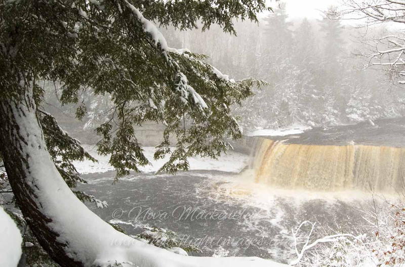 "Tahquamenon Falls in winter © 2007 Nova Mackentley Tahquamenon Falls SP, MI TFT  <div class=""ss-paypal-button""><div class=""ss-paypal-add-to-cart-section""><div class=""ss-paypal-product-options""><h4>Mat Sizes</h4><ul><li><a href=""https://www.paypal.com/cgi-bin/webscr?cmd=_cart&amp;business=T77V5VKCW4K2U&amp;lc=US&amp;item_name=Tahquamenon%20Falls%20in%20winter%20%C2%A9%202007%20Nova%20Mackentley%20Tahquamenon%20Falls%20SP%2C%20MI%20TFT&amp;item_number=http%3A%2F%2Fwww.nightflightimages.com%2FGalleries-1%2FUpper-Peninsula-of-MI%2Fi-c2krcXj&amp;button_subtype=products&amp;no_note=0&amp;cn=Add%20special%20instructions%20to%20the%20seller%3A&amp;no_shipping=2&amp;currency_code=USD&amp;weight_unit=lbs&amp;add=1&amp;bn=PP-ShopCartBF%3Abtn_cart_SM.gif%3ANonHosted&amp;on0=Mat%20Sizes&amp;option_select0=5%20x%207&amp;option_amount0=10.00&amp;option_select1=8%20x%2010&amp;option_amount1=18.00&amp;option_select2=11%20x%2014&amp;option_amount2=28.00&amp;option_select3=card&amp;option_amount3=4.00&amp;option_index=0&amp;charset=utf-8&amp;submit=&amp;os0=5%20x%207"" target=""paypal""><span>5 x 7 $11.00 USD</span><img src=""https://www.paypalobjects.com/en_US/i/btn/btn_cart_SM.gif""></a></li><li><a href=""https://www.paypal.com/cgi-bin/webscr?cmd=_cart&amp;business=T77V5VKCW4K2U&amp;lc=US&amp;item_name=Tahquamenon%20Falls%20in%20winter%20%C2%A9%202007%20Nova%20Mackentley%20Tahquamenon%20Falls%20SP%2C%20MI%20TFT&amp;item_number=http%3A%2F%2Fwww.nightflightimages.com%2FGalleries-1%2FUpper-Peninsula-of-MI%2Fi-c2krcXj&amp;button_subtype=products&amp;no_note=0&amp;cn=Add%20special%20instructions%20to%20the%20seller%3A&amp;no_shipping=2&amp;currency_code=USD&amp;weight_unit=lbs&amp;add=1&amp;bn=PP-ShopCartBF%3Abtn_cart_SM.gif%3ANonHosted&amp;on0=Mat%20Sizes&amp;option_select0=5%20x%207&amp;option_amount0=10.00&amp;option_select1=8%20x%2010&amp;option_amount1=18.00&amp;option_select2=11%20x%2014&amp;option_amount2=28.00&amp;option_select3=card&amp;option_amount3=4.00&amp;option_index=0&amp;charset=utf-8&amp;submit=&amp;os0=8%20x%2010"" target=""paypal""><span>8 x 10 $19.00 USD</span><img src=""https://www.paypalobjects.com/en_US/i/btn/btn_cart_SM.gif""></a></li><li><a href=""https://www.paypal.com/cgi-bin/webscr?cmd=_cart&amp;business=T77V5VKCW4K2U&amp;lc=US&amp;item_name=Tahquamenon%20Falls%20in%20winter%20%C2%A9%202007%20Nova%20Mackentley%20Tahquamenon%20Falls%20SP%2C%20MI%20TFT&amp;item_number=http%3A%2F%2Fwww.nightflightimages.com%2FGalleries-1%2FUpper-Peninsula-of-MI%2Fi-c2krcXj&amp;button_subtype=products&amp;no_note=0&amp;cn=Add%20special%20instructions%20to%20the%20seller%3A&amp;no_shipping=2&amp;currency_code=USD&amp;weight_unit=lbs&amp;add=1&amp;bn=PP-ShopCartBF%3Abtn_cart_SM.gif%3ANonHosted&amp;on0=Mat%20Sizes&amp;option_select0=5%20x%207&amp;option_amount0=10.00&amp;option_select1=8%20x%2010&amp;option_amount1=18.00&amp;option_select2=11%20x%2014&amp;option_amount2=28.00&amp;option_select3=card&amp;option_amount3=4.00&amp;option_index=0&amp;charset=utf-8&amp;submit=&amp;os0=11%20x%2014"" target=""paypal""><span>11 x 14 $29.00 USD</span><img src=""https://www.paypalobjects.com/en_US/i/btn/btn_cart_SM.gif""></a></li><li><a href=""https://www.paypal.com/cgi-bin/webscr?cmd=_cart&amp;business=T77V5VKCW4K2U&amp;lc=US&amp;item_name=Tahquamenon%20Falls%20in%20winter%20%C2%A9%202007%20Nova%20Mackentley%20Tahquamenon%20Falls%20SP%2C%20MI%20TFT&amp;item_number=http%3A%2F%2Fwww.nightflightimages.com%2FGalleries-1%2FUpper-Peninsula-of-MI%2Fi-c2krcXj&amp;button_subtype=products&amp;no_note=0&amp;cn=Add%20special%20instructions%20to%20the%20seller%3A&amp;no_shipping=2&amp;currency_code=USD&amp;weight_unit=lbs&amp;add=1&amp;bn=PP-ShopCartBF%3Abtn_cart_SM.gif%3ANonHosted&amp;on0=Mat%20Sizes&amp;option_select0=5%20x%207&amp;option_amount0=10.00&amp;option_select1=8%20x%2010&amp;option_amount1=18.00&amp;option_select2=11%20x%2014&amp;option_amount2=28.00&amp;option_select3=card&amp;option_amount3=4.00&amp;option_index=0&amp;charset=utf-8&amp;submit=&amp;os0=card"" target=""paypal""><span>card $5.00 USD</span><img src=""https://www.paypalobjects.com/en_US/i/btn/btn_cart_SM.gif""></a></li></ul></div></div> <div class=""ss-paypal-view-cart-section""><a href=""https://www.paypal.com/cgi-bin/webscr?cmd=_cart&amp;business=T77V5VKCW4K2U&amp;display=1&amp;item_name=Tahquamenon%20Falls%20in%20winter%20%C2%A9%202007%20Nova%20Mackentley%20Tahquamenon%20Falls%20SP%2C%20MI%20TFT&amp;item_number=http%3A%2F%2Fwww.nightflightimages.com%2FGalleries-1%2FUpper-Peninsula-of-MI%2Fi-c2krcXj&amp;charset=utf-8&amp;submit="" target=""paypal"" class=""ss-paypal-submit-button""><img src=""https://www.paypalobjects.com/en_US/i/btn/btn_viewcart_LG.gif""></a></div></div><div class=""ss-paypal-button-end""></div>"