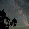 """Milky Way &amp; Tree 2 © 2013 Nova Mackentley Whitefish Point, MI MWT  <div class=""""ss-paypal-button""""><div class=""""ss-paypal-add-to-cart-section""""><div class=""""ss-paypal-product-options""""><h4>Mat Sizes</h4><ul><li><a href=""""https://www.paypal.com/cgi-bin/webscr?cmd=_cart&amp;business=T77V5VKCW4K2U&amp;lc=US&amp;item_name=Milky%20Way%20%26amp%3B%20Tree%202%20%C2%A9%202013%20Nova%20Mackentley%20Whitefish%20Point%2C%20MI%20MWT&amp;item_number=http%3A%2F%2Fwww.nightflightimages.com%2FGalleries-1%2FUpper-Peninsula-of-MI%2Fi-fwRJ9F3&amp;button_subtype=products&amp;no_note=0&amp;cn=Add%20special%20instructions%20to%20the%20seller%3A&amp;no_shipping=2&amp;currency_code=USD&amp;weight_unit=lbs&amp;add=1&amp;bn=PP-ShopCartBF%3Abtn_cart_SM.gif%3ANonHosted&amp;on0=Mat%20Sizes&amp;option_select0=5%20x%207&amp;option_amount0=10.00&amp;option_select1=8%20x%2010&amp;option_amount1=18.00&amp;option_select2=11%20x%2014&amp;option_amount2=28.00&amp;option_select3=card&amp;option_amount3=4.00&amp;option_index=0&amp;charset=utf-8&amp;submit=&amp;os0=5%20x%207"""" target=""""paypal""""><span>5 x 7 $11.00 USD</span><img src=""""https://www.paypalobjects.com/en_US/i/btn/btn_cart_SM.gif""""></a></li><li><a href=""""https://www.paypal.com/cgi-bin/webscr?cmd=_cart&amp;business=T77V5VKCW4K2U&amp;lc=US&amp;item_name=Milky%20Way%20%26amp%3B%20Tree%202%20%C2%A9%202013%20Nova%20Mackentley%20Whitefish%20Point%2C%20MI%20MWT&amp;item_number=http%3A%2F%2Fwww.nightflightimages.com%2FGalleries-1%2FUpper-Peninsula-of-MI%2Fi-fwRJ9F3&amp;button_subtype=products&amp;no_note=0&amp;cn=Add%20special%20instructions%20to%20the%20seller%3A&amp;no_shipping=2&amp;currency_code=USD&amp;weight_unit=lbs&amp;add=1&amp;bn=PP-ShopCartBF%3Abtn_cart_SM.gif%3ANonHosted&amp;on0=Mat%20Sizes&amp;option_select0=5%20x%207&amp;option_amount0=10.00&amp;option_select1=8%20x%2010&amp;option_amount1=18.00&amp;option_select2=11%20x%2014&amp;option_amount2=28.00&amp;option_select3=card&amp;option_amount3=4.00&amp;option_index=0&amp;charset=utf-8&amp;submit=&a"""