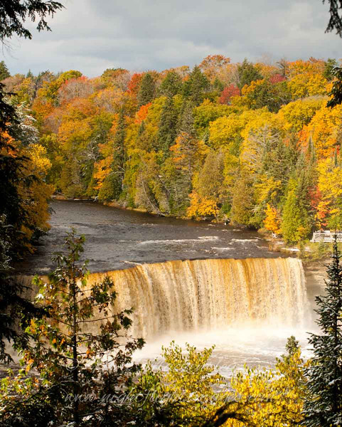 "Tahquamenon Falls in fall © 2009 Nova Mackentley Tahquamenon Falls SP, MI TFF  <div class=""ss-paypal-button""><div class=""ss-paypal-add-to-cart-section""><div class=""ss-paypal-product-options""><h4>Mat Sizes</h4><ul><li><a href=""https://www.paypal.com/cgi-bin/webscr?cmd=_cart&amp;business=T77V5VKCW4K2U&amp;lc=US&amp;item_name=Tahquamenon%20Falls%20in%20fall%20%C2%A9%202009%20Nova%20Mackentley%20Tahquamenon%20Falls%20SP%2C%20MI%20TFF&amp;item_number=http%3A%2F%2Fwww.nightflightimages.com%2FGalleries-1%2FUpper-Peninsula-of-MI%2Fi-w3V793N&amp;button_subtype=products&amp;no_note=0&amp;cn=Add%20special%20instructions%20to%20the%20seller%3A&amp;no_shipping=2&amp;currency_code=USD&amp;weight_unit=lbs&amp;add=1&amp;bn=PP-ShopCartBF%3Abtn_cart_SM.gif%3ANonHosted&amp;on0=Mat%20Sizes&amp;option_select0=5%20x%207&amp;option_amount0=10.00&amp;option_select1=8%20x%2010&amp;option_amount1=18.00&amp;option_select2=11%20x%2014&amp;option_amount2=28.00&amp;option_select3=card&amp;option_amount3=4.00&amp;option_index=0&amp;charset=utf-8&amp;submit=&amp;os0=5%20x%207"" target=""paypal""><span>5 x 7 $11.00 USD</span><img src=""https://www.paypalobjects.com/en_US/i/btn/btn_cart_SM.gif""></a></li><li><a href=""https://www.paypal.com/cgi-bin/webscr?cmd=_cart&amp;business=T77V5VKCW4K2U&amp;lc=US&amp;item_name=Tahquamenon%20Falls%20in%20fall%20%C2%A9%202009%20Nova%20Mackentley%20Tahquamenon%20Falls%20SP%2C%20MI%20TFF&amp;item_number=http%3A%2F%2Fwww.nightflightimages.com%2FGalleries-1%2FUpper-Peninsula-of-MI%2Fi-w3V793N&amp;button_subtype=products&amp;no_note=0&amp;cn=Add%20special%20instructions%20to%20the%20seller%3A&amp;no_shipping=2&amp;currency_code=USD&amp;weight_unit=lbs&amp;add=1&amp;bn=PP-ShopCartBF%3Abtn_cart_SM.gif%3ANonHosted&amp;on0=Mat%20Sizes&amp;option_select0=5%20x%207&amp;option_amount0=10.00&amp;option_select1=8%20x%2010&amp;option_amount1=18.00&amp;option_select2=11%20x%2014&amp;option_amount2=28.00&amp;option_select3=card&amp;option_amount3=4.00&amp;option_index=0&amp;charset=utf-8&amp;submit=&amp;os0=8%20x%2010"" target=""paypal""><span>8 x 10 $19.00 USD</span><img src=""https://www.paypalobjects.com/en_US/i/btn/btn_cart_SM.gif""></a></li><li><a href=""https://www.paypal.com/cgi-bin/webscr?cmd=_cart&amp;business=T77V5VKCW4K2U&amp;lc=US&amp;item_name=Tahquamenon%20Falls%20in%20fall%20%C2%A9%202009%20Nova%20Mackentley%20Tahquamenon%20Falls%20SP%2C%20MI%20TFF&amp;item_number=http%3A%2F%2Fwww.nightflightimages.com%2FGalleries-1%2FUpper-Peninsula-of-MI%2Fi-w3V793N&amp;button_subtype=products&amp;no_note=0&amp;cn=Add%20special%20instructions%20to%20the%20seller%3A&amp;no_shipping=2&amp;currency_code=USD&amp;weight_unit=lbs&amp;add=1&amp;bn=PP-ShopCartBF%3Abtn_cart_SM.gif%3ANonHosted&amp;on0=Mat%20Sizes&amp;option_select0=5%20x%207&amp;option_amount0=10.00&amp;option_select1=8%20x%2010&amp;option_amount1=18.00&amp;option_select2=11%20x%2014&amp;option_amount2=28.00&amp;option_select3=card&amp;option_amount3=4.00&amp;option_index=0&amp;charset=utf-8&amp;submit=&amp;os0=11%20x%2014"" target=""paypal""><span>11 x 14 $29.00 USD</span><img src=""https://www.paypalobjects.com/en_US/i/btn/btn_cart_SM.gif""></a></li><li><a href=""https://www.paypal.com/cgi-bin/webscr?cmd=_cart&amp;business=T77V5VKCW4K2U&amp;lc=US&amp;item_name=Tahquamenon%20Falls%20in%20fall%20%C2%A9%202009%20Nova%20Mackentley%20Tahquamenon%20Falls%20SP%2C%20MI%20TFF&amp;item_number=http%3A%2F%2Fwww.nightflightimages.com%2FGalleries-1%2FUpper-Peninsula-of-MI%2Fi-w3V793N&amp;button_subtype=products&amp;no_note=0&amp;cn=Add%20special%20instructions%20to%20the%20seller%3A&amp;no_shipping=2&amp;currency_code=USD&amp;weight_unit=lbs&amp;add=1&amp;bn=PP-ShopCartBF%3Abtn_cart_SM.gif%3ANonHosted&amp;on0=Mat%20Sizes&amp;option_select0=5%20x%207&amp;option_amount0=10.00&amp;option_select1=8%20x%2010&amp;option_amount1=18.00&amp;option_select2=11%20x%2014&amp;option_amount2=28.00&amp;option_select3=card&amp;option_amount3=4.00&amp;option_index=0&amp;charset=utf-8&amp;submit=&amp;os0=card"" target=""paypal""><span>card $5.00 USD</span><img src=""https://www.paypalobjects.com/en_US/i/btn/btn_cart_SM.gif""></a></li></ul></div></div> <div class=""ss-paypal-view-cart-section""><a href=""https://www.paypal.com/cgi-bin/webscr?cmd=_cart&amp;business=T77V5VKCW4K2U&amp;display=1&amp;item_name=Tahquamenon%20Falls%20in%20fall%20%C2%A9%202009%20Nova%20Mackentley%20Tahquamenon%20Falls%20SP%2C%20MI%20TFF&amp;item_number=http%3A%2F%2Fwww.nightflightimages.com%2FGalleries-1%2FUpper-Peninsula-of-MI%2Fi-w3V793N&amp;charset=utf-8&amp;submit="" target=""paypal"" class=""ss-paypal-submit-button""><img src=""https://www.paypalobjects.com/en_US/i/btn/btn_viewcart_LG.gif""></a></div></div><div class=""ss-paypal-button-end""></div>"
