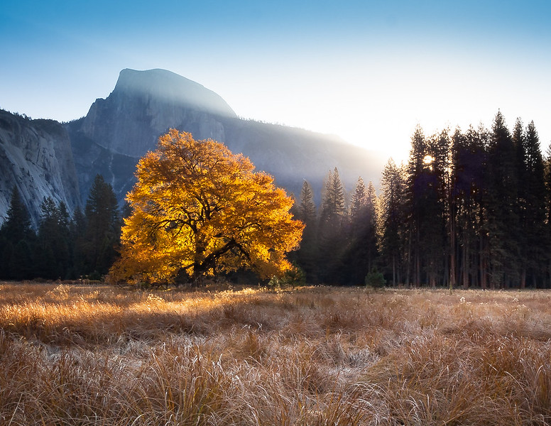 Yosemite Fall Sunrise