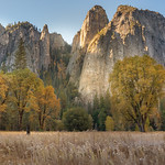 Cathedral Meadow, Yosemite