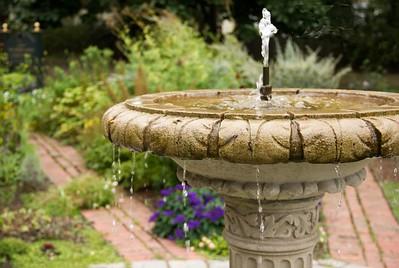 Fountain and Lantana