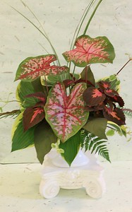 September, Intermediate, Traditional Foliage Award, Michele Tomasik, First Award