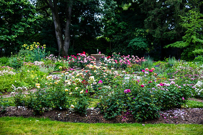 Avis Campbell Gardens Maintained by the Garden Club of Montclair