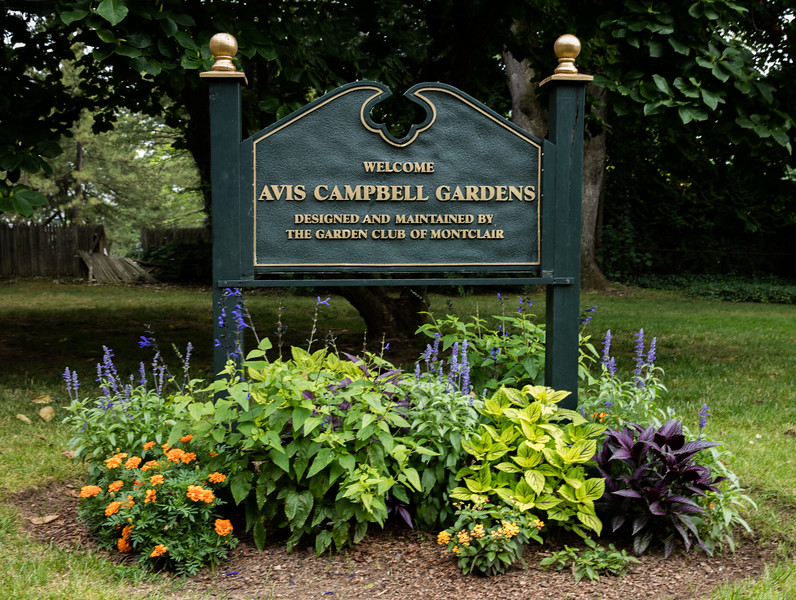Welcome to Avis Campbell Gardens Maintained by the Garden Club of Montclair