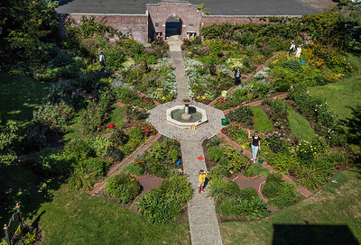 """Rooftop View of Avis Campbell Gardens 'Ticket to Paradise"""" example"""