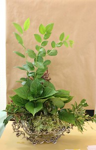 September, Intermediate, Traditional Foliage Design, Gretchen Prater, Third Award