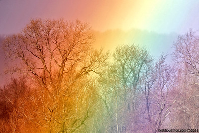 Rainbow3_010417sm