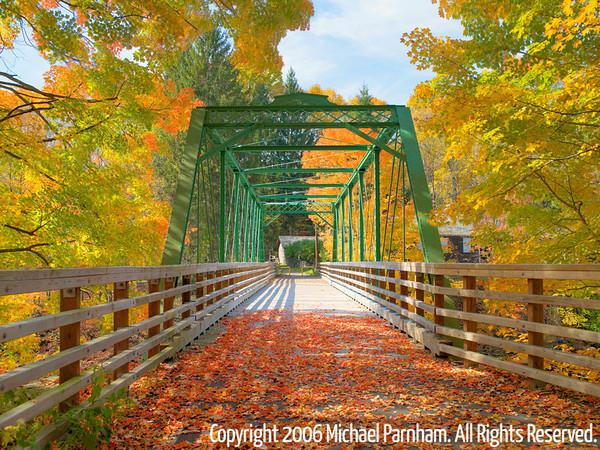 Foliage Walkway