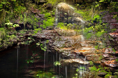 Dantes Glen. Lawson, Blue Mountains
