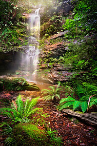 Dante's Glen - Blue Mountains NSW.