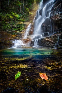 Sylvia Falls - Blue Mountains NSW