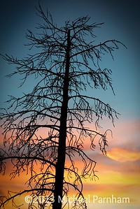 Sunset Off Pacific Crest Trail
