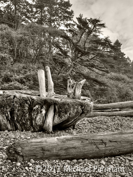 Southern Coast, Washington