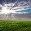 Sunbursts in Mist