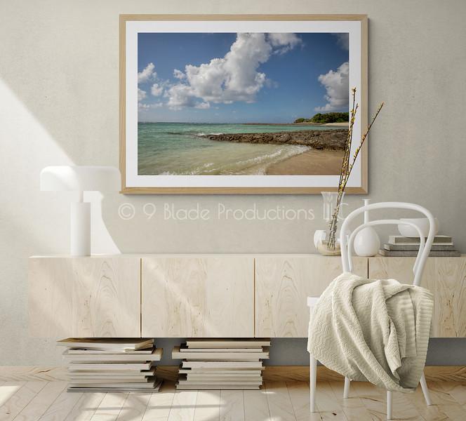 Coastal Daydream