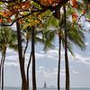 Sailing Waikiki