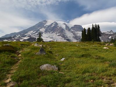 Dead Horse Creek Trail | Mount Rainier