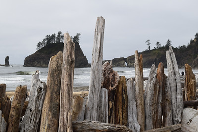 Second Beach | Olympic National Park