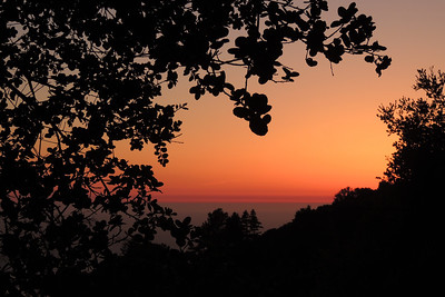 Nepenthe Sunset | Big Sur, CA