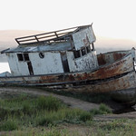 Point Reyes Shipwreck | Inverness, CA