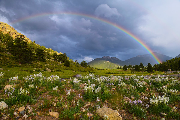 """""""After The Storm""""   Rocky Mountain National Park"""