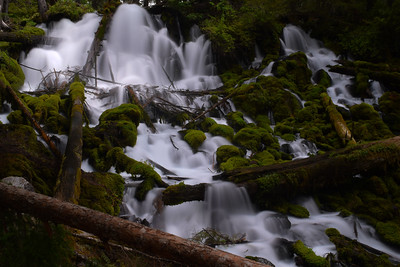 Clearwater Falls   Oregon