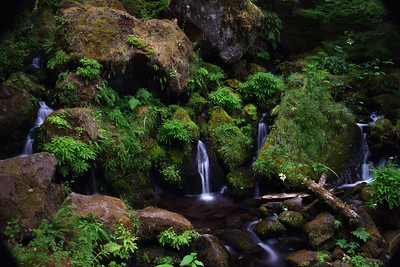 Umpque River Falls   Oregon