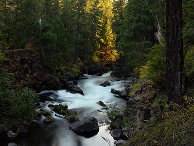 Natural Bridge Falls   Oregon