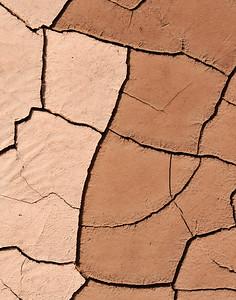 Mud Patterns