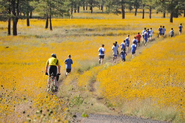Sinagua Middle School students sprint across Buffalo Park to begin their Cross Country season.