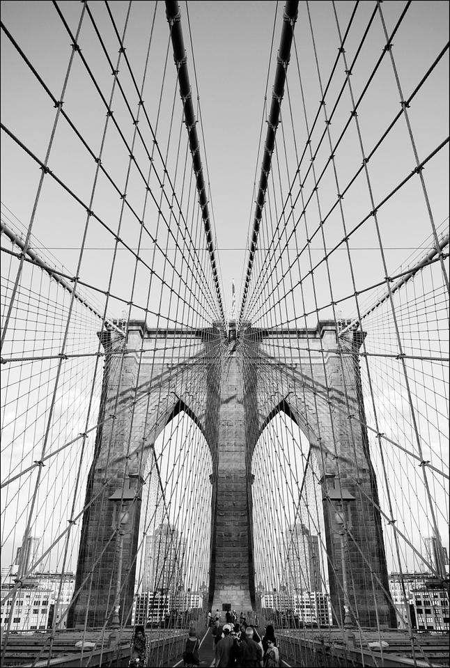 Bridge in Symetry