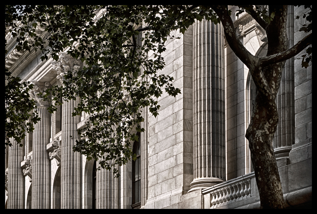 The Pillars and the Tree