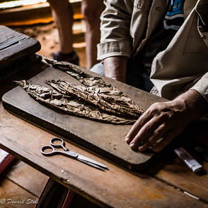 Making a cigar, Concha and Paco Hernandez family farm, Viñales Valley, Cuba