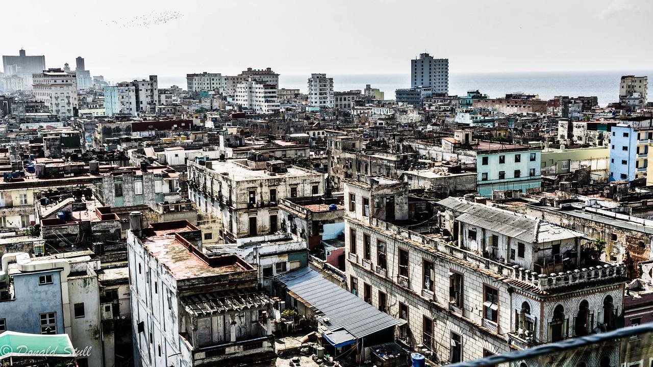 Havana rooftops, 1
