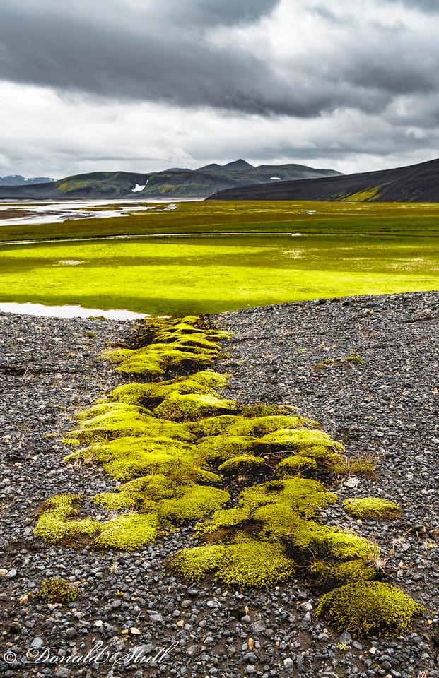 Follow the green moss road. Landmannalaugar.