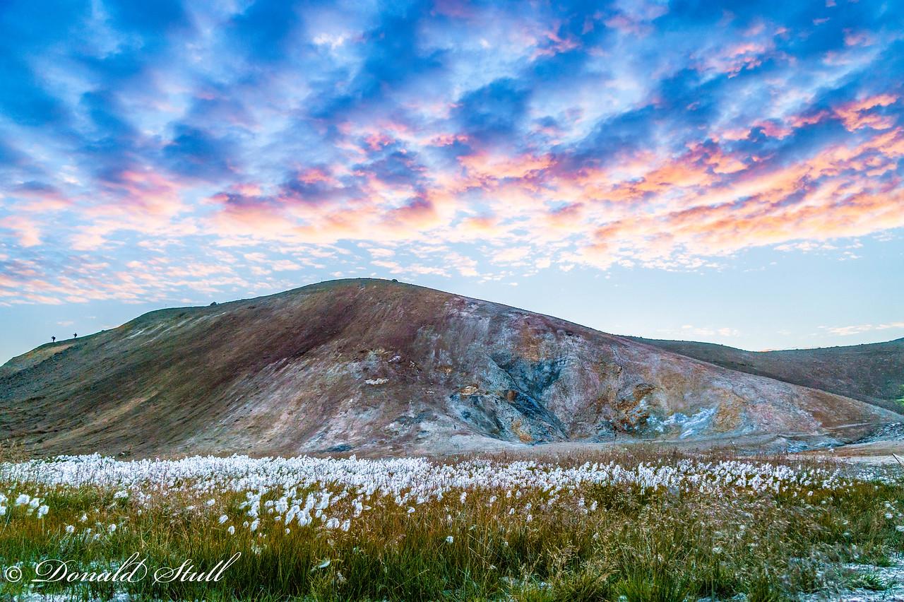Cottongrass/cottonsedge, Krafla, near Lake Myvatn.