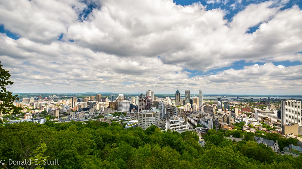 View of Montreal from the top of Mount Royal (Montreal)