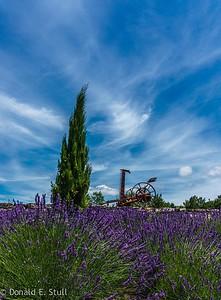 Lavender and grass mower, Cirque de Navacelles