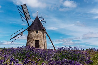 Windmill and Lavender, Cirque de Navacelles