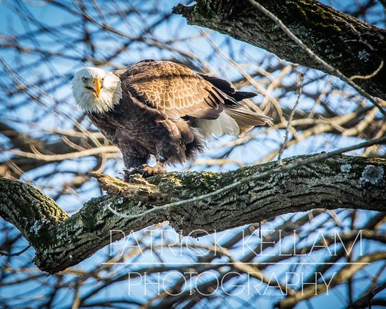 Delaware Trip January 2016