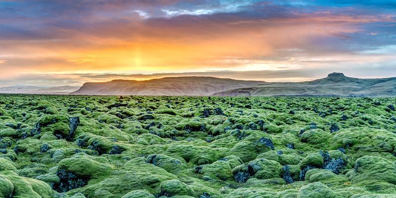 Icelandic Mossy Rocks at Sunset