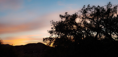 Jackson Ranch at Sunset
