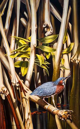 Heron Mangrove