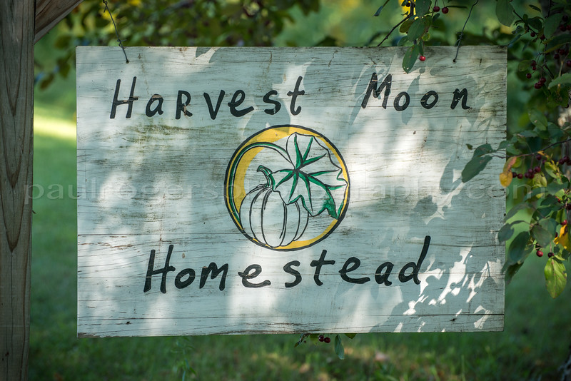 Harvest Moon Homestead, Host to Camping & Music Festival