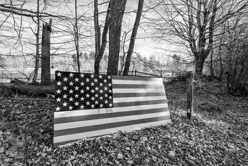 American Flag on Wood, Hartland, 2017