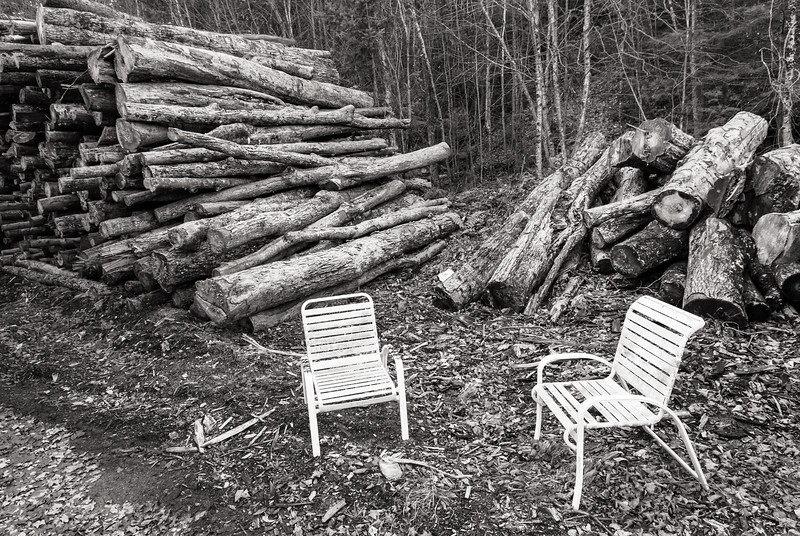 Logging Site, Plainfield, 2010